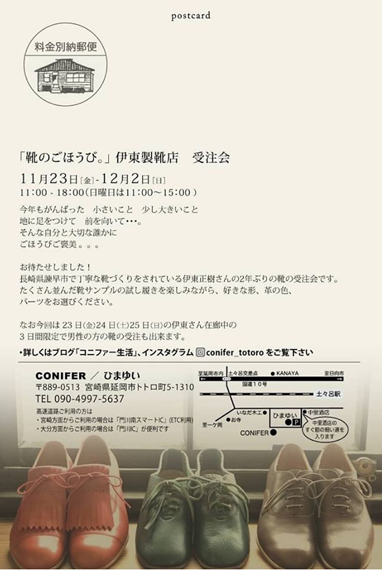 conifer02.jpg